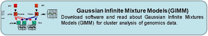 GIMM software